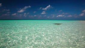Cleanlagoon op een tropisch eiland met golven stock footage