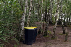 Cleanliness in the forest Royalty Free Stock Photo