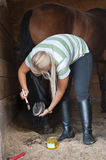 Cleans a hoof of horse. A woman cleans a hoof of horse royalty free stock image