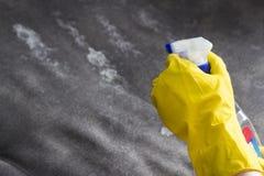 Cleanser девушки распыляя на софе, женщине конца-вверх стоковые фотографии rf