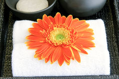 Cleanser and blossom at washbasin Stock Photos