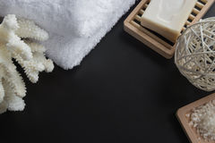 Cleansing spa accessories Stock Photography