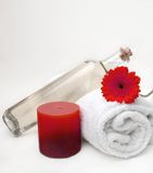 Cleansing Spa Massage Stock Photography