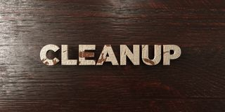 Cleanup - grungy wooden headline on Maple  - 3D rendered royalty free stock image Stock Photography
