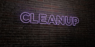 CLEANUP -Realistic Neon Sign on Brick Wall background - 3D rendered royalty free stock image Royalty Free Stock Photo