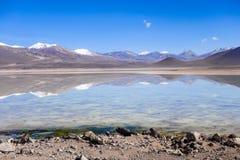 Clear altiplano laguna in sud Lipez reserva, Bolivia Stock Image