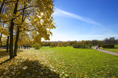 Clear autumn day Royalty Free Stock Photo