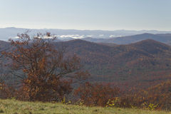 Clear Autumn View of the Appalachian Mountains Stock Image