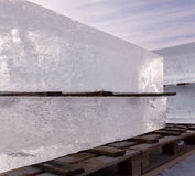 Clear blocks of ice piled on a wooden pallet Stock Images