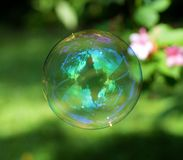 Clear and Blue Bubble Near Green Leaves Royalty Free Stock Image