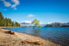 Clear blue morning at lake Wanaka Stock Photos