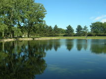 Clear Blue Pond Stock Images