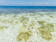 Clear blue sea, sky and white beach Royalty Free Stock Photos