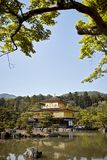 Clear blue skies at Kinkaku-Ji temple surrounded by forest royalty free stock image