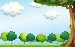 A clear blue sky and the green trees. Illustration of a clear blue sky and the green trees Royalty Free Stock Image
