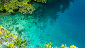 Clear Blue Water and Coral in Mangrove near Warikaf Homestay, Kabui Bay, Passage. Gam Island, West Papuan, Raja Ampat.  Stock Photos