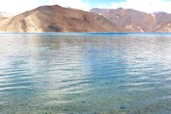 Clear blue waters - Pangong Lake Stock Photography