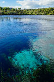 Clear blue well in New Zealand Royalty Free Stock Photography