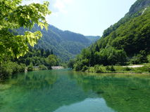 The clear Bohinj lake in Slovenia Royalty Free Stock Images