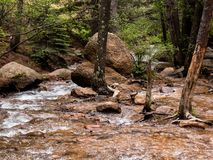 Clear Bubbling Mountain Stream. Image of clear stream coming down Cheyenne Mountain in Colorado Springs Colorado. Loved how the stream splits between the rocks stock photography