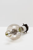 Clear bulb Stock Image