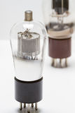 Clear bulb Royalty Free Stock Photos