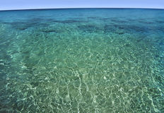 Clear Caribbean water. Stock Photography