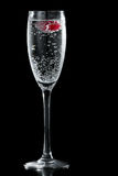 Clear champagne with a raspberry. Clear sparkling wine in a champagne flute with a red raspberry floating in it Stock Images
