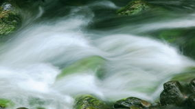 Clear, Clean Water Flowing in a Creek stock video footage