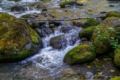 The Clear and Cold Waters Royalty Free Stock Photography