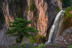 Clear Creek Falls, Washington State Royalty Free Stock Image