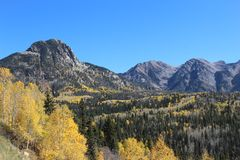 Clear day in Colorado mountains. Summerday in Colorado. Beautiful colors or green and yellow on a clear day royalty free stock photography