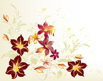 Clear floral vector background Royalty Free Stock Image