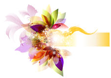 Clear flower background  with space for text Stock Image