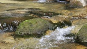 Clear fresh water stream. stock video