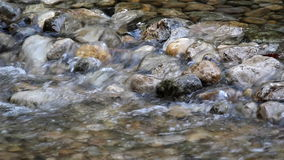 Clear fresh water stream stock video footage