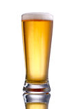 Clear glass of beer Royalty Free Stock Photography