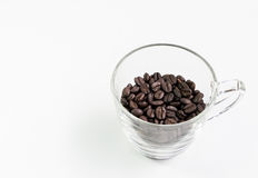 Clear glass cup with the roasted coffee beans. Royalty Free Stock Images