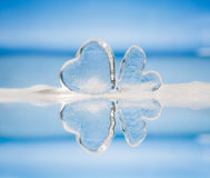 Clear glass hearts in foam Stock Images