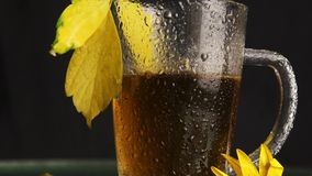 A clear glass mug is wet after a rain of hot tea stands in the midst of an autumn landscape: yellowed fallen leaves, yellow flower stock video