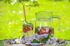 Clear Glass Pitcher With Water and Strawberry Stock Photography