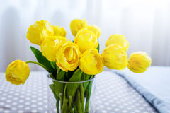 Clear glass vase containing cut yellow tulips and clear glass. Baubles against a background bedroom and curtain daylight time Royalty Free Stock Photography