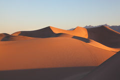 Clear graphic shapes of sand dunes at sunrise Stock Photography