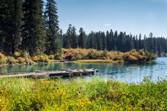 Clear Lake in bright autumn day. Clear Lake in McKenzie river area in Central Oregon in fall season Stock Photography