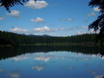 Clear Lake In Oregon Stock Image