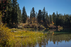 Clear lake. In Oregon at autumn Stock Image