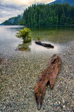Clear Lake with Pebble Bottom Stock Images