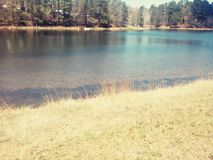 Clear  lake. Pretty clear sunny lake in spring Royalty Free Stock Photos