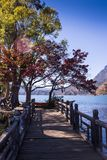 Clear lake surrounded by autumn forest Stock Images