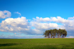 Clear landscape Stock Photography